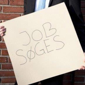 Job søges